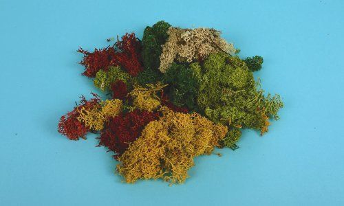 Gaugemaster GM166 Lichen Assorted (80g)